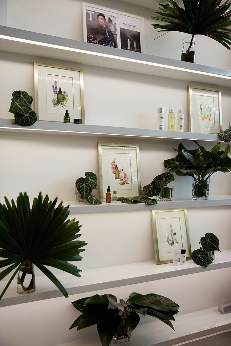 Art work display for cosmeceuticals